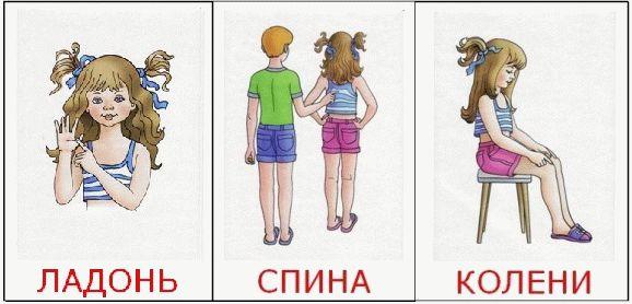 Картинки части тела
