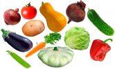 Картинки с овощами для детей